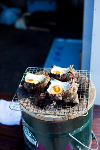 漁港で水揚げされた魚介や、季節を味わえる採れたての野菜や果物などが並びます。朝ごはんには、海鮮丼はもちろん、貝や干物など名物グルメの食べ歩きもおすすめ!