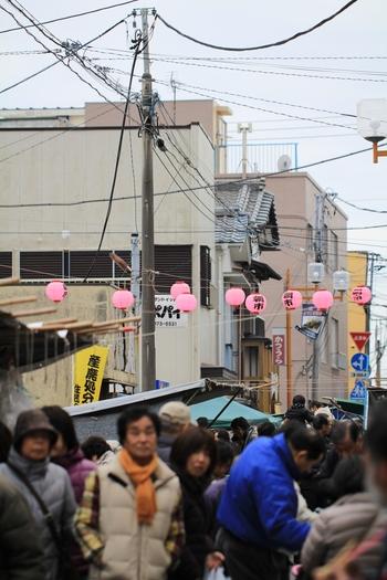 日本三大朝市のひとつ「勝浦朝市」は、1591(天正19)年から続く400年以上の歴史がある朝市です。営業時間は6:00~11:00で、開催場所が日程によって異なるので、確認してからおでかけくださいね。
