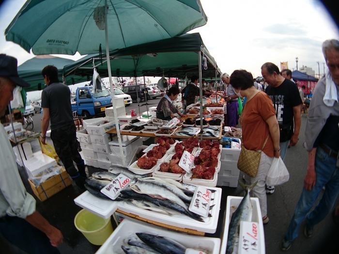 日本最大級の朝市「館鼻岸壁朝市」は、3月中旬~12月の毎週日曜の日の出(午前4:00頃)~9:00頃まで開催されています。港町・八戸の岸壁の全長800mに300店以上の屋台が立ち並び、毎週1万人以上が来場する人気スポットです。