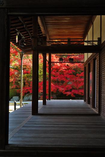 秋の京都で。嵐電「嵐山駅」から徒歩10分以内の《紅葉(もみじ)スポット》いろいろ…♪