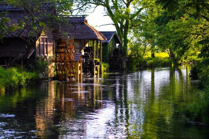 ノスタルジックな水車小屋。万水川(よろずいがわ)と蓼川(たでがわ)は、自然の姿をそのまま残す川です。ここは、1989年に上映された、黒澤明監督の「夢」の舞台として選ばれた場所としても知られています。  夏はクリアボートに乗って涼を楽しむこともできるんですよ。水車のまわる音と、生い茂る草木は日本の原風景のよう。