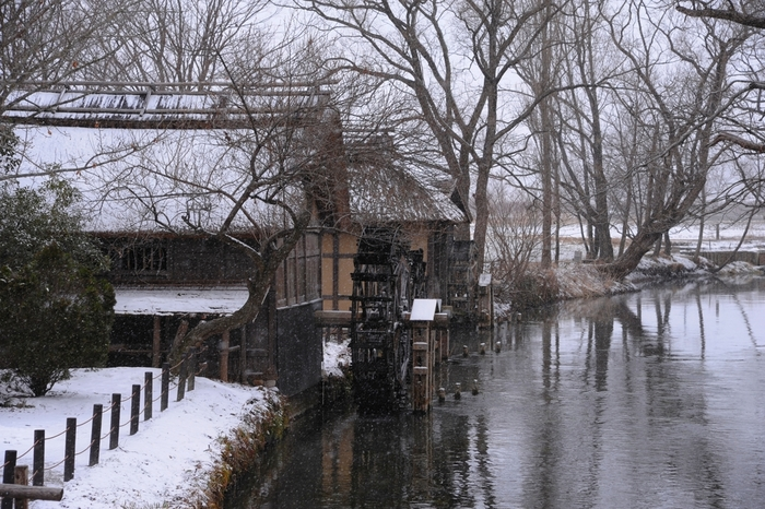 冬は、水車小屋もすっかり雪景色。こんなに寒い季節でも、川は底が見えるほどの透明感があります。澄んだ水を眺めながら過ごす時間も良いものですね。