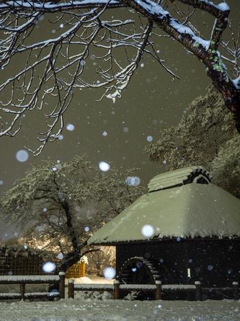 夜の忍野八海は、昼間とはまったく違った姿を見せます。しんしんと降り積もる雪と静けさに、どこか厳かな気持ちにもなってきます。富士山の麓ということもあり、夜はかなり気温が下がります。しっかり防寒対策をしてお出かけくださいね。