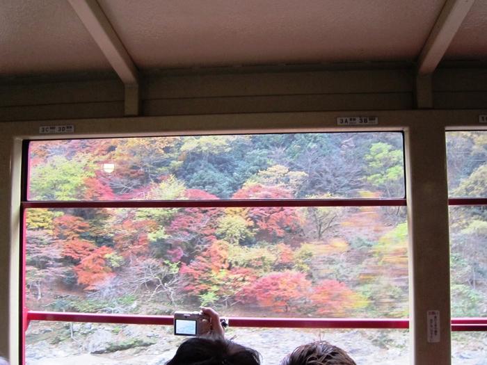 保津川峡谷を眼下に、紅葉の景色を楽しめます。列車の雰囲気も相まって、ノスタルジックな気持ちになれます。