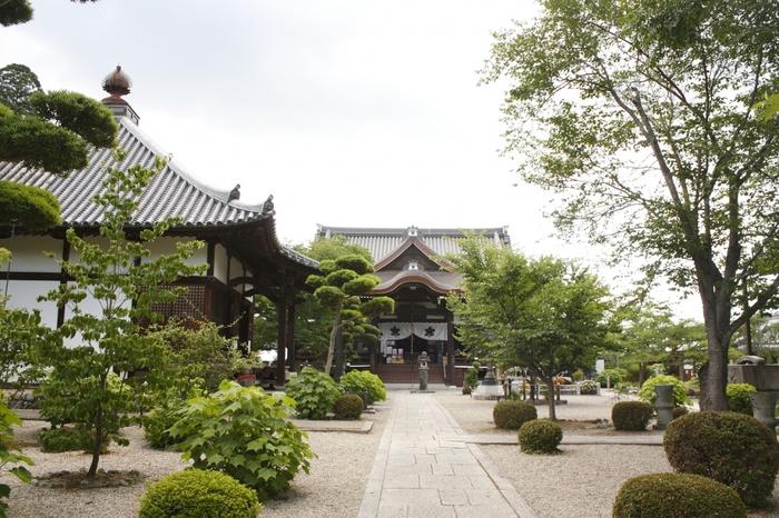 奈良県明日香村にある橘寺。近鉄橿原神宮前駅か飛鳥駅からバスで到着します。聖徳太子誕生の地といわれています。
