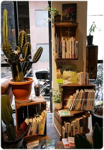 カフェでは工務店で制作された雑貨や多肉などの植物も販売しています。