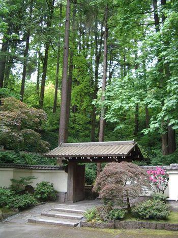 四季を問わず美しい和の世界を楽しめる「ポートランド日本庭園」。開園したのは1967年ですが、昨年リニューアルオープンを果たしました。リニューアルには建築家の隈研吾さんも関わられたそうです。