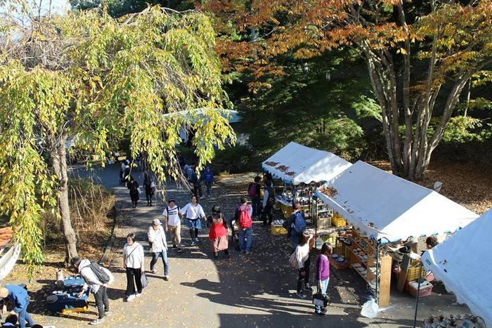 お出かけ日和に行ってみよう! 秋のおすすめクラフトイベント6選