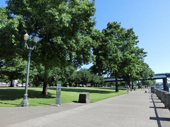 アウトドアやヘルシー志向の方もたくさん集まるのが、ポートランド。天気のいい日には、川沿いを散歩したり、ジョギングしたり、サイクリングやヨガしたりする人を多く見かけます。  こちらはダウンタウンの川沿いにある広大な公園「トム・マッコール・ウォーターフロント・パーク(Tom McCall Waterfront Park)」。週末にはイベントもよく開催されますよ。
