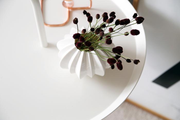 「枝もの」や「実もの」のほか、草花をドライにした「枯れもの」は、水分が抜けることで深みを増した色や質感が魅力です。天井から吊るして奥行き感を演出したり、お部屋のあちらこちらに散りばめてボタニカルな印象を作ったり、インテリアにあたたかみを添えてみませんか。