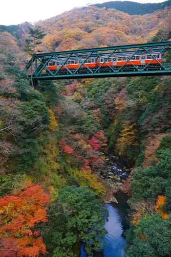 旅行シーズンの春から秋の箱根は、豊かな緑と季節の花々で彩られ、秋が深まる毎に木々は染まり、情感あふれる景色が広がっていきます。  【12月初旬の頃の「出山の鉄橋」。出山の鉄橋(早川橋梁)は、箱根登山鉄道線の塔ノ沢駅と出山信号場間の早川に架かる鉄橋で、現存する日本最古の鉄道橋として知られる。】