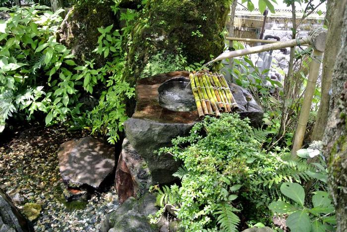 箱根では、大自然が育んだ伏流水がここかしこに湧き出ており、箱根の多くの店で天然の湧水を活用しています。 【大平台の高台、町営駐車場脇の「仙元の泉」は、浅間山の中腹の岩間から湧き出る名水。箱根の湧水中で評判高い水の一つ。】