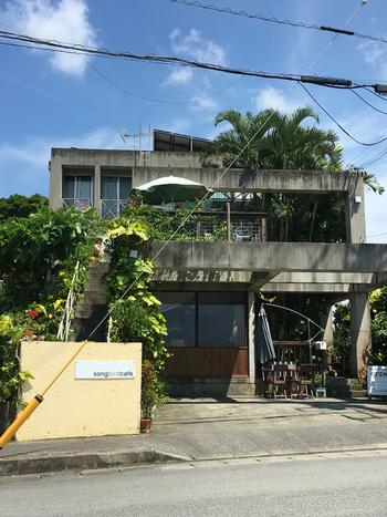 沖縄県中頭郡読谷村にある『ソングバードカフェ』は、無農薬のコーヒーと、読谷村で育った食材を使った料理をいただけるお店です。