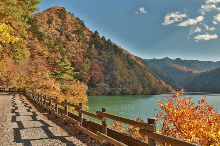 奥多摩湖は、東京を流れる多摩川の上流にある人造の湖。青梅線の奥多摩駅から、バスや車で15~20分くらいで行くことができます。東京とは思えないような、雄大なパノラマを楽しむことができます。