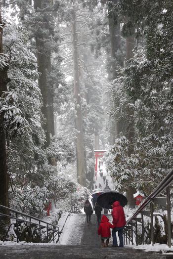 落葉降る晩秋も、枯木立や雪景色の冬の箱根も、それぞれに趣があり、実に印象的です。【2月中旬の「箱根神社」参道】