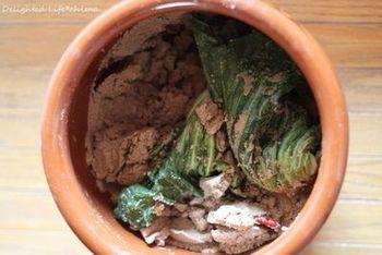 長芋や大和芋などの山芋は、ぬか漬けや味噌漬けなどにすると、本当においしい!山芋の栄養に、発酵のパワーもプラスされますので、ぜひお試しください。