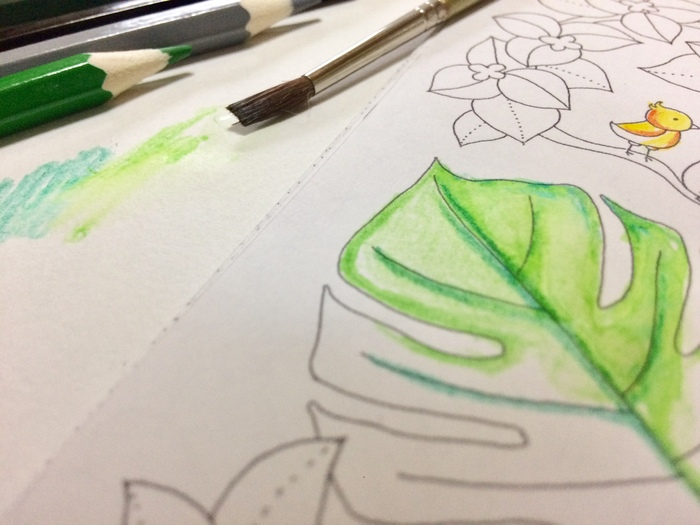 色をつけた部分を上から、軽く水を含ませた筆でなぞっていきます。これが基本ですが、画用紙に水を含ませ、その上に水彩色鉛筆で色をつけたり、様々な方法がありますよ。  ここで、使う筆についてご説明を。 特に水彩色鉛筆専用の筆を使用しないといけないわけではありません。絵の具用の筆を使いこなしましょう。 また、「水筆ペン」という、水を内蔵できる画期的な筆が販売されていますので、そちらもおすすめ。ノックすれば使いたい分だけ水がでてくる優れものです。