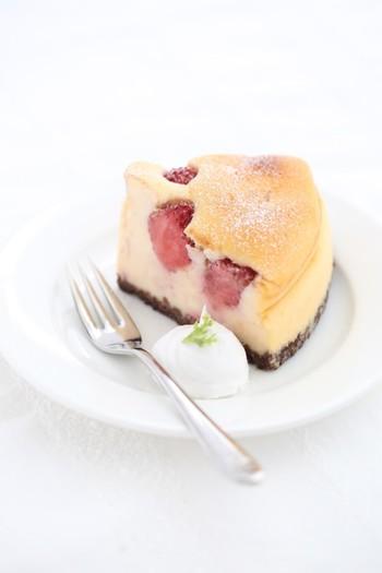 """兵庫県高砂市にて安心安全良質な国産小麦や地元のこだわり食材を使ってつくるチーズケーキを販売している「Cacha mikiya」さん。 クリームチーズはアメリカ産、その他全ての食材は全て国産にこだわった""""笑顔になれる魔法のチーズケーキ""""。 こちらは、苺が丸ごとたっぷり入った人気商品。半解凍すれば、アイスチーズケーキとしても楽しめます。"""