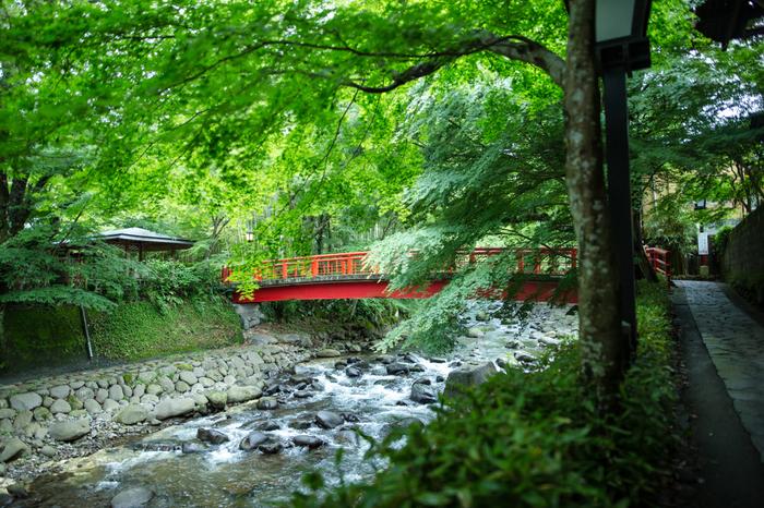【伊豆】でほっこり温泉旅♪おすすめのお宿&日帰り温泉