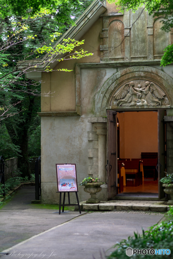 箱根の美術館はどれも見ごたえのあるハイレベルな美を堪能できる素敵な施設ばかりです。美術やアートに興味がある方であれば、ぜひ一日かけてゆっくり巡ってみてくださいね。