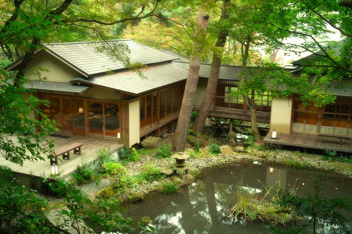美術館には、昭和初期の日本家屋を改装してつくられた風流なカフェ「開化亭」があります。鯉がのびのびと泳ぐ池や緑の木々を眺めながらゆったりとした時間を過ごすことができそうですね。