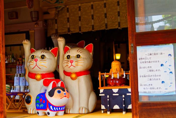 本殿には大きな招き猫。どこかユーモラスな招き猫の表情に、ほっこり和みますね。