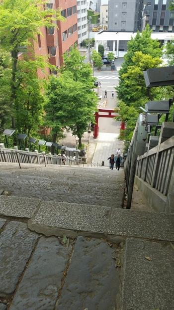 """想像以上の急こう配に驚きます。この階段を馬でのぼり、将軍に梅を献上した曲垣平九郎にちなみ""""出世の階段""""と呼ばれています。"""