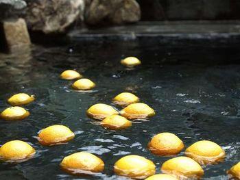 温泉ではないものの露天風呂もあり、旬の果実が浮かべられた果実湯が楽しめます。時期によって果実が変わり、彩りや香りで季節を感じられるお風呂になっています。