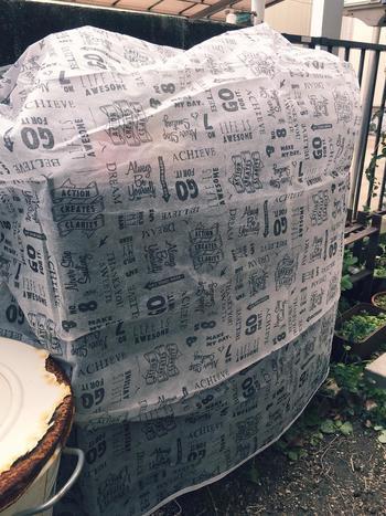 とっても寒い日には植物たちにも防寒対策をしてあげましょう。ビニール袋をかぶせる場合は、天気のいい昼間には外してムレないように。 衣類収納袋のような不織布のカバーをつけてあげると、ムレずに寒さや風から守ることができますよ。小さな鉢植えを夜間だけ発泡スチロールの箱に入れる方法も◎