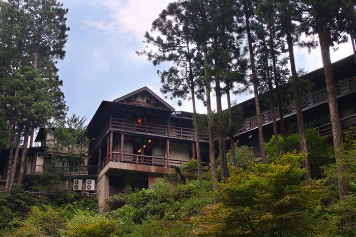 こちらも檜原村のカフェですが、兜家旅館に併設された「渓谷展望カフェ」は完全予約制です。武蔵五日市駅からバスで約1時間ほどの森の中で、静かな時間を満喫することができます。