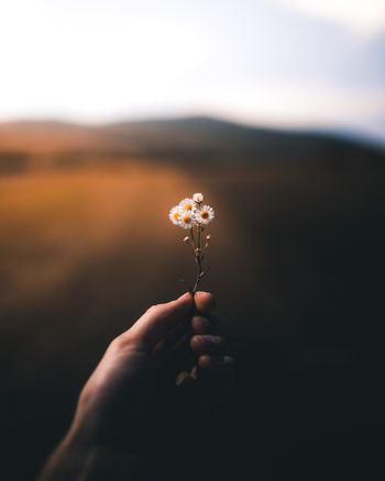 身近にある小さなことにも幸せを感じることができれば、人生の幸福度が変わってきます。自分が幸せかどうかは、自分の考え方次第なのです。