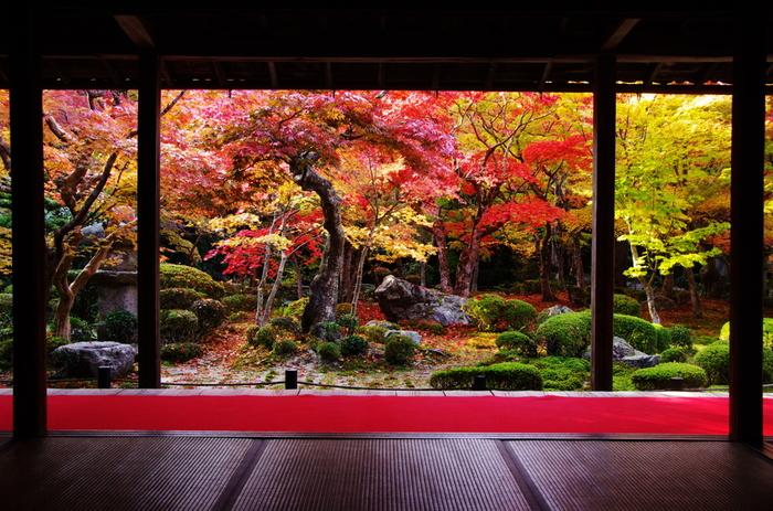 これから紅葉や雪でより一層美しい姿を見せる京都。趣ある景色を楽しんだ後は、ぜひ温泉でゆったりと疲れた体を癒してくださいね。