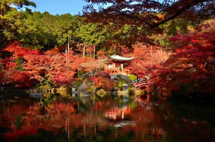 人気が高い伏見稲荷神社や、紅葉の名所である醍醐寺・東福寺があるのが洛南エリア。京都の玄関口である京都駅もこの洛南エリアに含まれます。