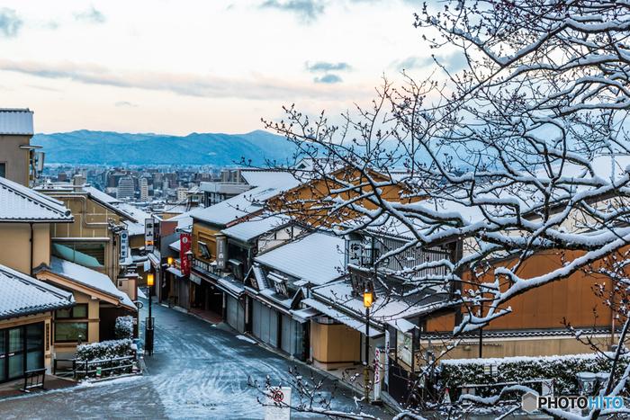 冬の京都を堪能できる、おすすめスポットを7ヶ所ご紹介します。スポット近郊のお茶処やカフェもあわせて紹介しますので、名所巡りで体が冷えてしまったら、ぜひ立ち寄って温まってくださいね♪