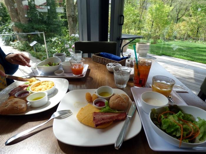 緑あふれる中庭に面したカフェ・レストラン「LYS(リス)」は美術館利用者以外も利用できます。素敵なコレクションを楽しんだ後、ちょっと優雅な気分でお食事をしたい時に訪れてみてはいかがでしょうか?