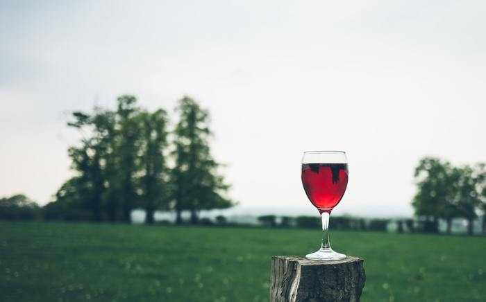 お酒は正しく飲めば、健康的に楽しむことができますよ。昔から「酒は百薬の長」ということわざがあるように、全く飲まないよりも適度に飲んだ方が長生きできる、といわれることも。大人らしいお酒のたしなみ方をおさえて、上手においしく飲みましょう♪