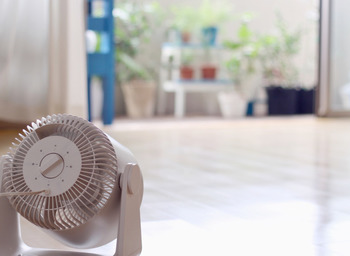 ワックス掛けが終わったら、扇風機やサーキュレーターを使ってしっかり乾燥させましょう。 速乾タイプのワックスもあります。