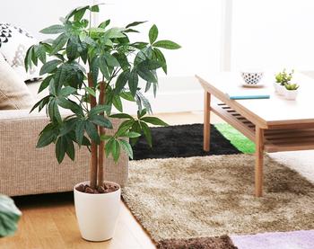 パッと見まるで本物のような質の高いフェイクグリーン。お部屋の空気をキレイにしてくれる効果もあり、機能性も◎です。