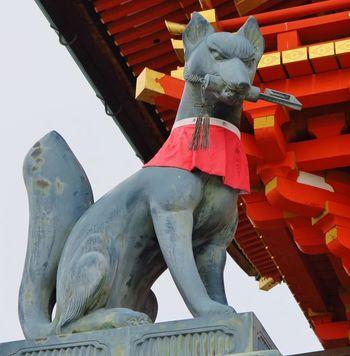 伏見稲荷大社にいくつも置かれているのが狛狐。これは伏見稲荷大社の祭神である稲荷大明神のお使いが白狐(びゃっこ)であるためです。