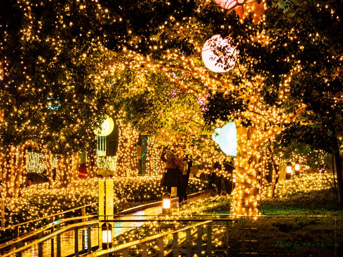 新宿南口からすぐ目の前に広がるサザンテラス。このシーズンは金色に輝くイルミネーションが冬の新宿をきらきらと彩ります。1日の終わりに、ファンタジックで暖かな光の世界を楽しんでみてはいかがですか?