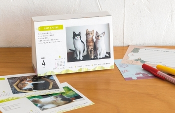1日1にゃんこ(1にゃんこ以上のときも!)、365日かわいい猫ちゃんに出会える日めくりカレンダー。 おしゃれ通販のフェリシモが運営する『フェリシモ猫部』に寄せられた愛猫の写真とエッセイ、そこから選ばれた選りすぐりのにゃんこカレンダーです。