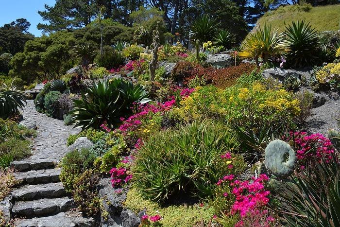 植物園は植物の息吹を直に感じることができる特別な場所です。ユニークな植物やかたちが可愛いお花など、見どころもたくさん。つぼみをつけたお花を見つけたら、きっと生命力の素晴らしさを感じることができますね。