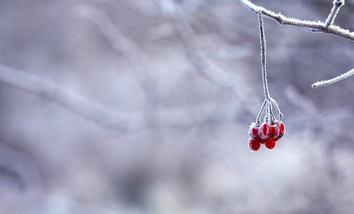 防寒×おしゃれを叶えるコーデやアイテムをご紹介してきましたが、いかがでしたでしょうか?ホットアイテム×ホットアイテムをさりげなく合わせるだけで寒さをかなり凌ぐことができますよ♪ただただ何枚も着込むだけの冬はやめて、今年の冬はおしゃれしながら寒くない冬を過ごしましょう。