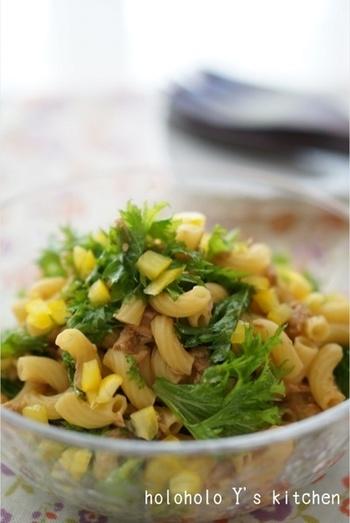 マカロニとツナをあわせて醤油ベースのドレッシングでマカロニサラダを和風にアレンジ。ピリッと辛いわさび菜はやはり醤油味が落ち着きます。