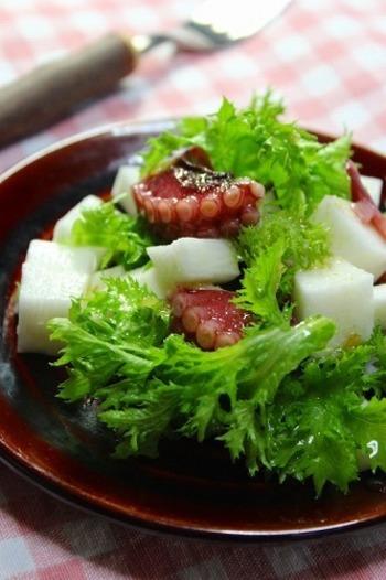 赤・白・緑と鮮やかな見た目のサラダ。ピリッと効いた柚子胡椒ドレッシングは爽やかな辛みのわさび菜との相性もよさそう。冬が旬な真蛸を使って作りたいですね。