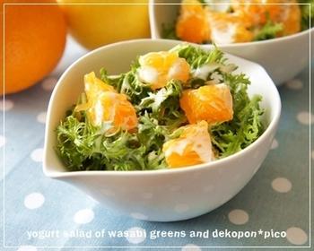 甘みが強いデコポンにヨーグルトソースをかけて、いつもと違ったフルーツサラダはいかがですか? わさび菜のシャキシャした食感とよくあいそうですね。