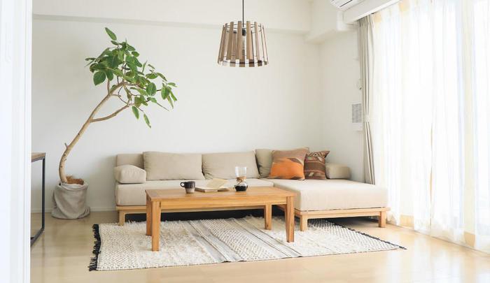 リビングには家族のものが集まり、ごちゃごちゃとしてしまいがち。家具やものが多いことで、ほこりも溜まり、掃除も大変になります。