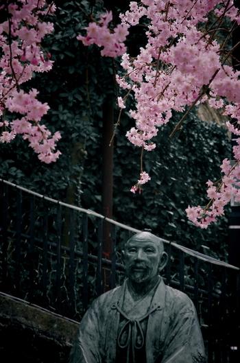 日本最古の温泉ともいわれている有馬温泉。兵庫県の中心地・三宮からも電車なら30分程度で訪れることができるのも魅力です。有馬温泉は太閤・豊臣秀吉が湯治のためにたびたび訪れた縁の地。周辺では、温泉だけでなく神社仏閣や太閤の歴史に触れることができる場所がたくさんあります。