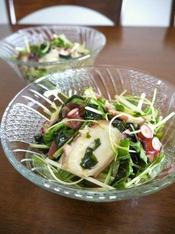 タコと生わかめの歯ごたえ、野菜のシャキシャキ感が美味しいサラダにワサビドレッシングの爽やかさが◎