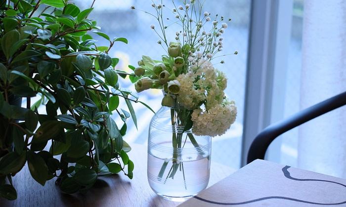 窓辺に置いて、みずみずしく映える花の表情と透ける光を楽しんで。